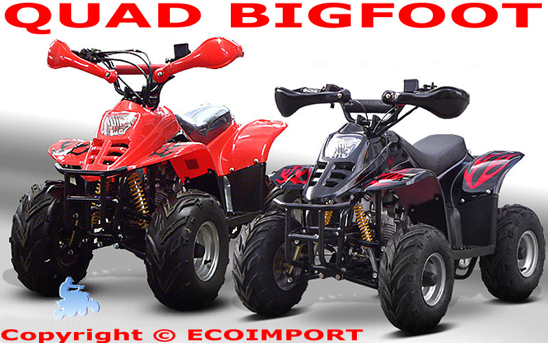 Quad diamond 110cc bigfoot enfant pas cher